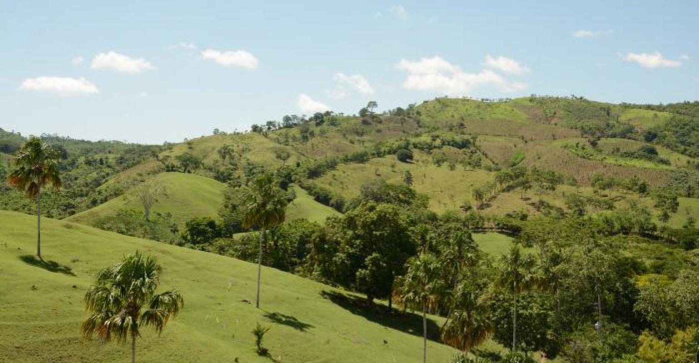 Vista desde el árbol La Ceiba en La Cansona.
